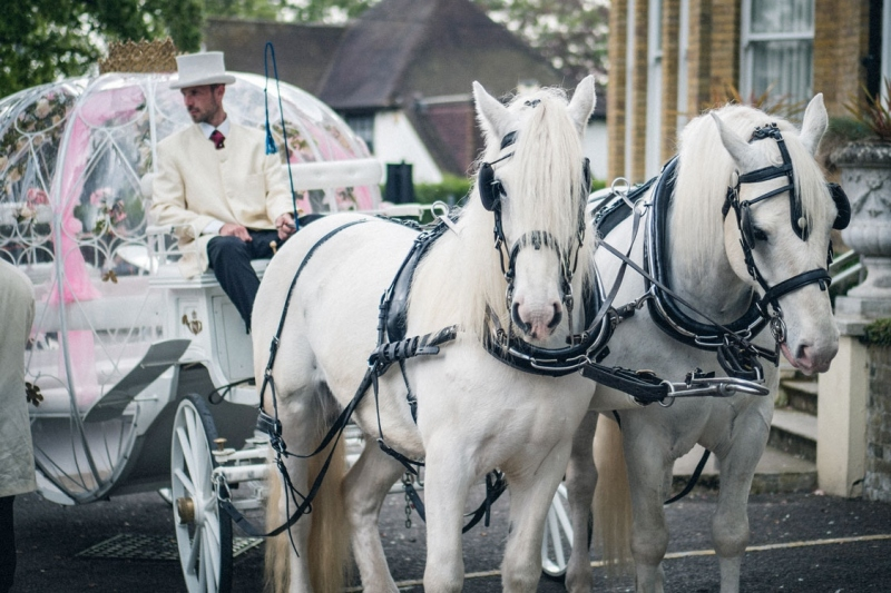 fairy-tale-wedding-carriage