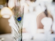 wedding-peacock-feather
